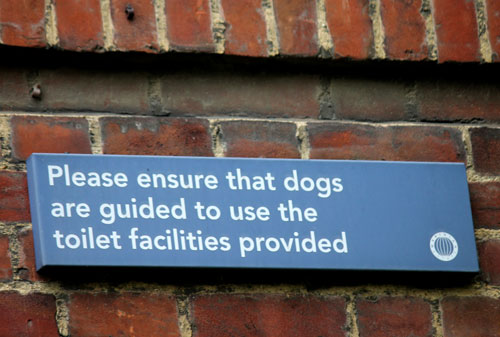 Seriously?  Dog toilet facilities?